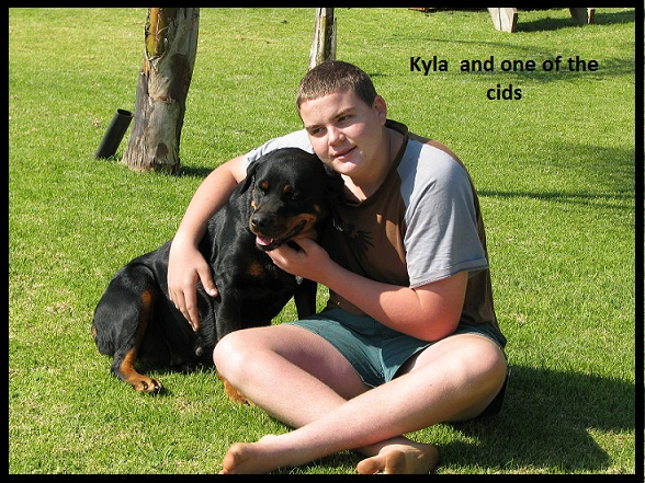 facts-about-the-rottweiler